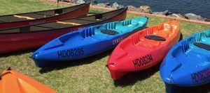 Kayaks and canoes for hire at Nelligen